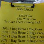 soy bean bags